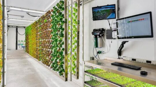 11/12/2019 | Ponix Is Bringing Local Produce to Food Deserts With Hydroponic Technology